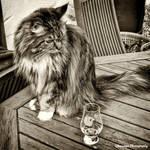 Monochrome - Whisky Glass by Okavanga