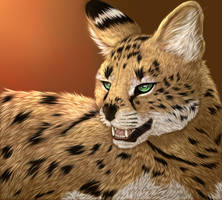 Serval by Griinz