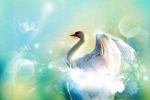 Swan by lebloe