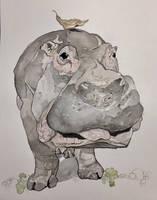 Hippopotamus  by mybuttercupart