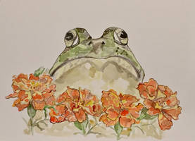 Froggy in the Marigolds by mybuttercupart