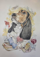 Portrait of a Basset Hound Lady by mybuttercupart