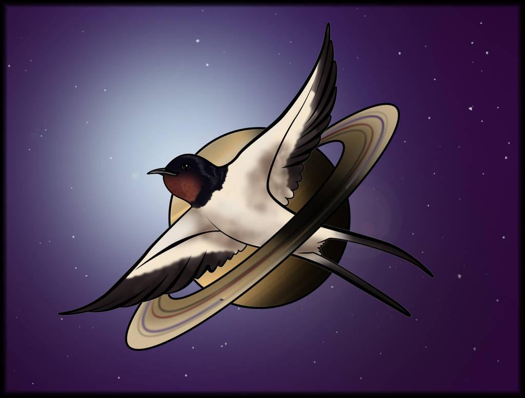Space swallow nasa edition - 06 novembre 2018 by Arnolf