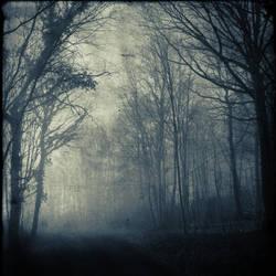 -MisT II- by DilekGenc