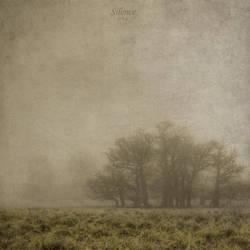 Silence.. by DilekGenc