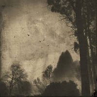 Nowhere- by DilekGenc