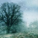 Rain Drops... by DilekGenc