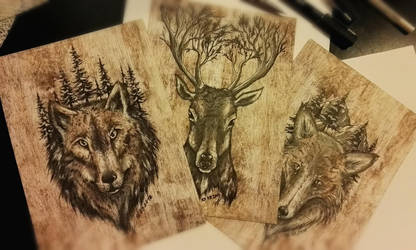 Wolf, deer and a fox by Wojak1991