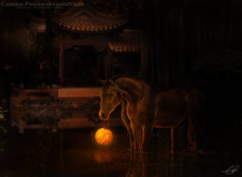 THE YEAR OF THE HORSE by Rhiaan