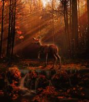 SOLACE TREE by Rhiaan