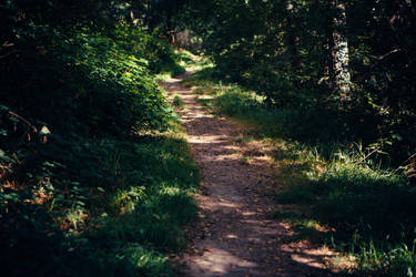 Paths-7 by PSD-stocks999