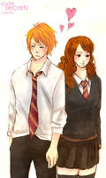 HP: ron and hermione by meru90