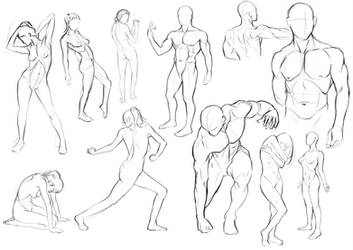 Anatomy Practice - Day 1 by Nixri