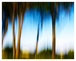 Luminous Landscapes - 04 by HorstSchmier