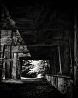 Remnants 05 by HorstSchmier