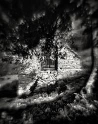 Puescen Negro, Val Redorta, Ticino, Switzerland by HorstSchmier