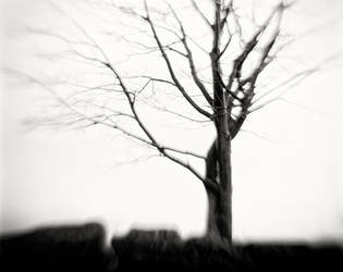 Northern-Hesse, Brother Grimm County 02 by HorstSchmier