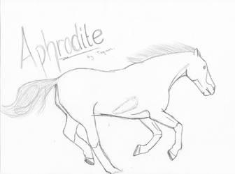 Aphrodite - Mustang Mare by LoveWildHorses