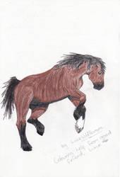 Draft Horse by LoveWildHorses