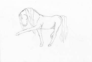 Weird horse by LoveWildHorses