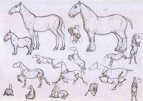 Horse Study 3 by WhiteSpades