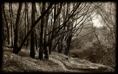 path side by awjay
