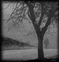 misty moment 2 by awjay