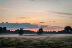 Misty sunset by valkeeja