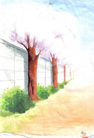 Cherry Blossom Road by Brionna