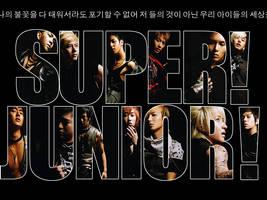 Super Junior by songsthatspoke