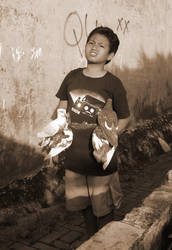 Dove Boy by Mizratz