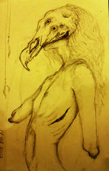 feathers by MELANIE4054