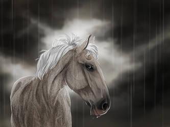 So much rain by TARSKYN