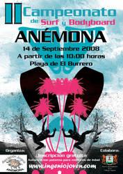 Cartel Campeonato Surf 2008 by ingeniojoven
