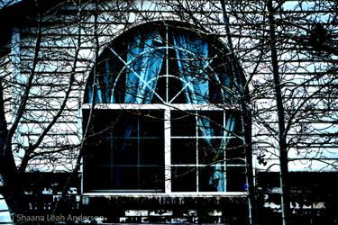 Window by deleriumgfx