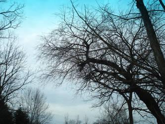 Baby blue sky by eckstacy