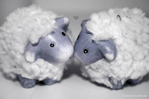 Sheep love by ChangXian