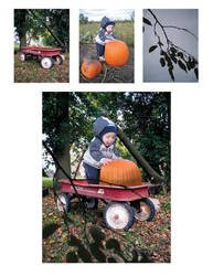 Composited Image - Boy in Wagon by livewiredstudios