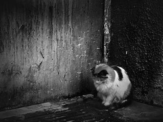 Alone by EvranOzturk