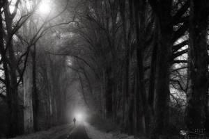 loneliness by ildiko-neer