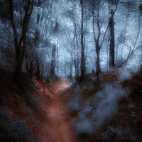 moonlight valley by ildiko-neer