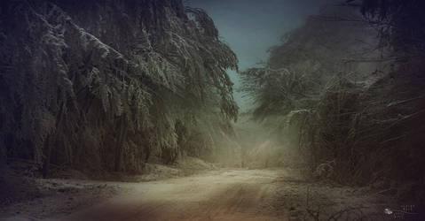 Feels like Siberia II. by ildiko-neer