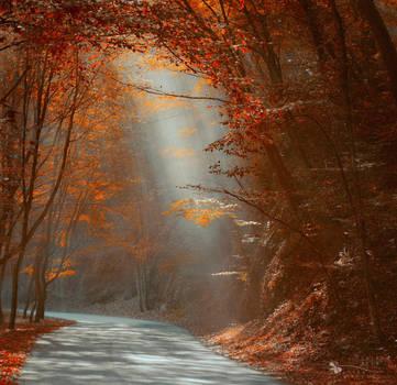 Smoky Autumn by ildiko-neer