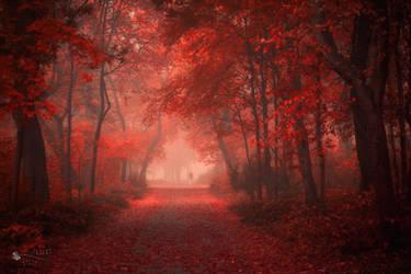 Walk Like Hell by ildiko-neer