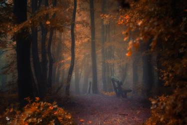 The Deepest Deep by ildiko-neer