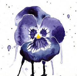 pansy watercolor by excentric