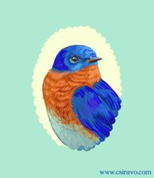 Bluebird Cameo by BlueBirdie