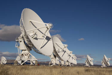 VLA - Line up by BellusTerra