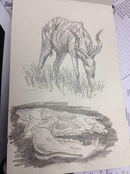 Sketchbook 1 by starkanime