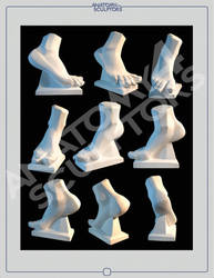 Blockout foot by anatomy4sculptors